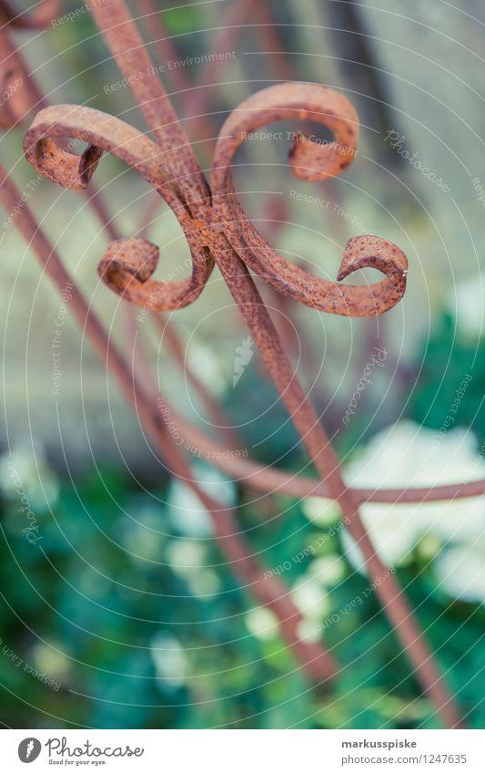 rostiges rosengitter Pflanze Blatt Freude Blüte Stil Garten Lifestyle Arbeit & Erwerbstätigkeit Wohnung Park Design Freizeit & Hobby Häusliches Leben elegant