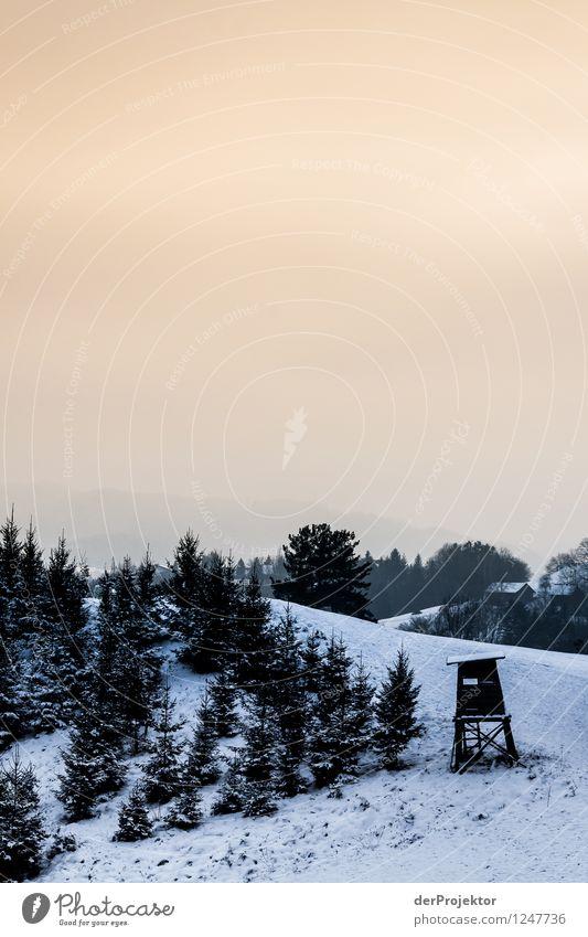 Still ruht die Schneelandschaft Umwelt Natur Landschaft Pflanze Tier Winter Schönes Wetter Eis Frost Baum Wiese Feld Wald Hügel Berge u. Gebirge ästhetisch