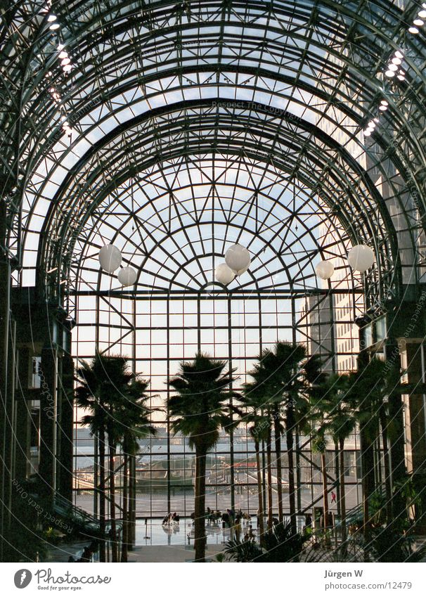 Atrium im World Financial Center, New York 1989 Fenster Architektur Glas USA Palme New York City Manhattan filigran Glasfassade Stahlkonstruktion Atrium Glasdach