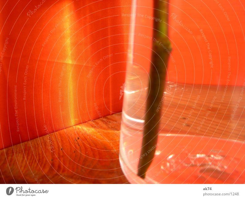 Vase orange Fototechnik