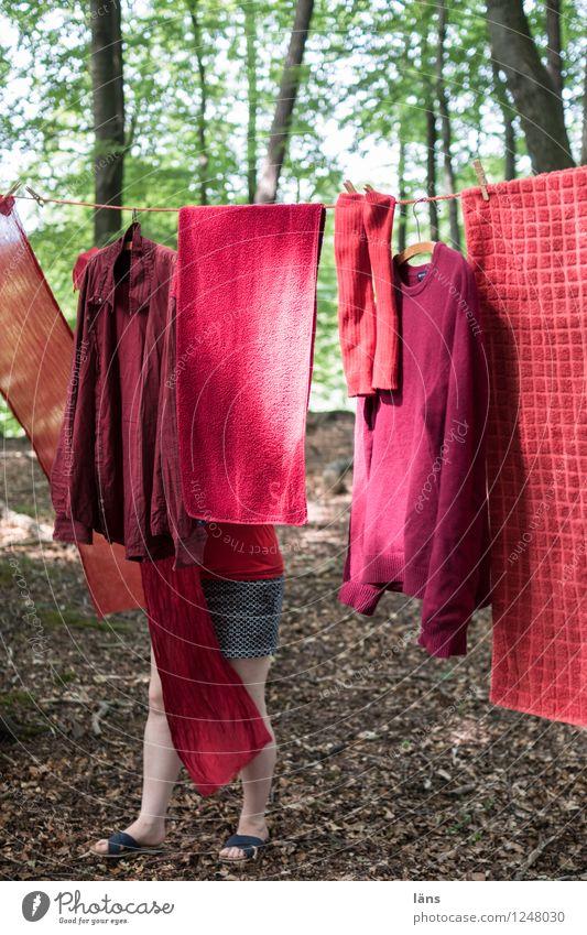 pZ3 l secret-garden Mensch feminin Leben Beine 1 Umwelt Natur Landschaft Sommer Baum Wald Bekleidung Pullover Strümpfe Stoff hängen Zusammenhalt Wäscheleine