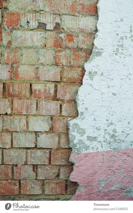 Im Umbruch. Haus Mauer Wand Linie ästhetisch hässlich kaputt braun rosa weiß Verfall Backstein Putz Farbfoto Gedeckte Farben Außenaufnahme Textfreiraum links