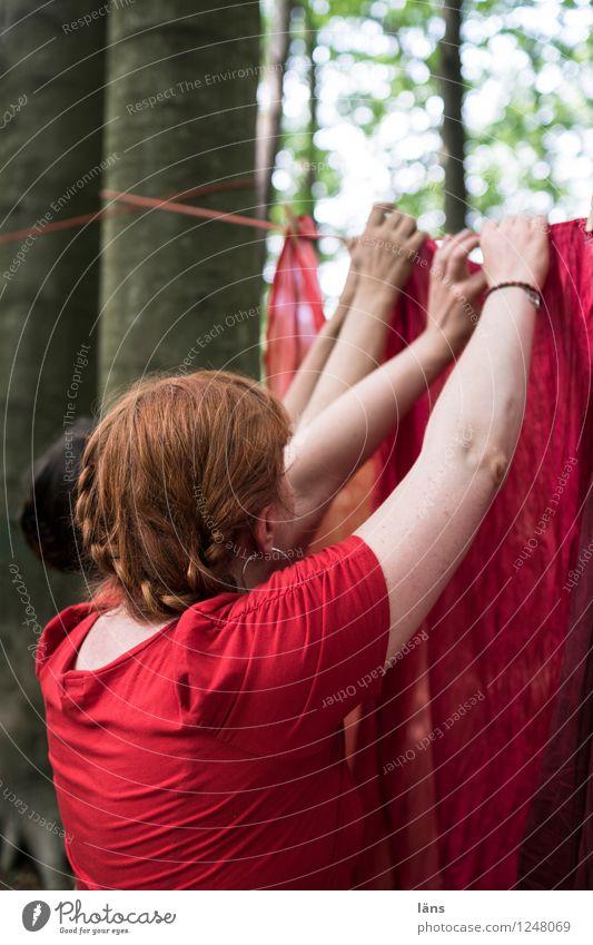 pZ3 l Waschtag Mensch Frau Natur Sommer Baum rot Hand Landschaft Wald Erwachsene Leben feminin Haare & Frisuren Zusammensein Arbeit & Erwerbstätigkeit Arme