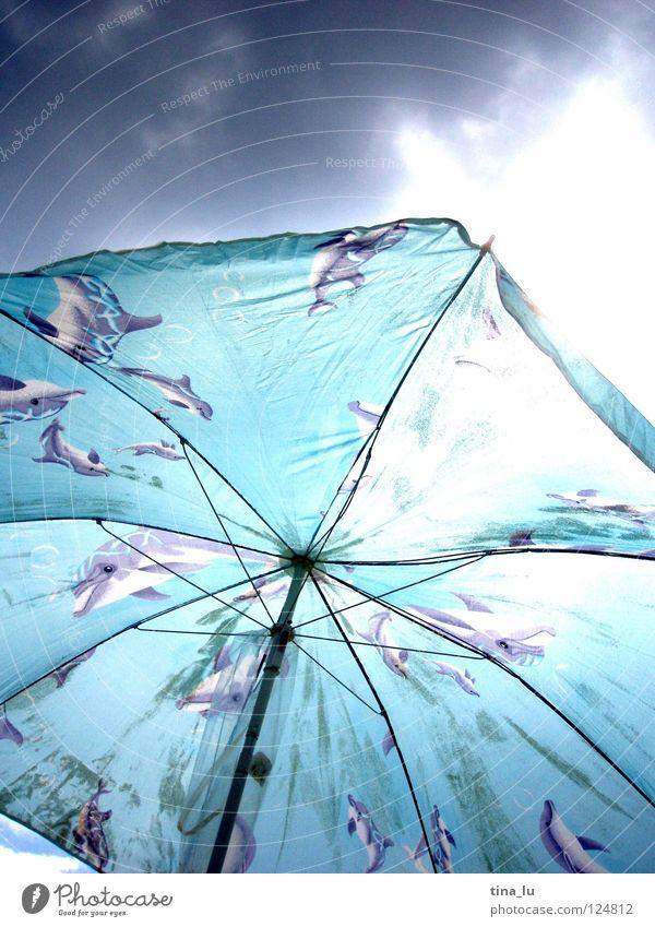 Badewetter Sonnenschirm Delphine Wolken Strand Sommer Bulgarien Sturm Leidenschaft grau Gestell schlechtes Wetter Ferien & Urlaub & Reisen Physik kalt luftig