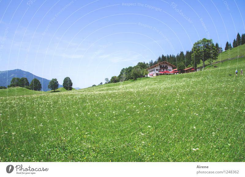 Kindheitserinnerung | ...und oben kriegst du ein Limo! Himmel Natur blau grün Sommer Landschaft ruhig Haus Berge u. Gebirge Wiese natürlich Glück