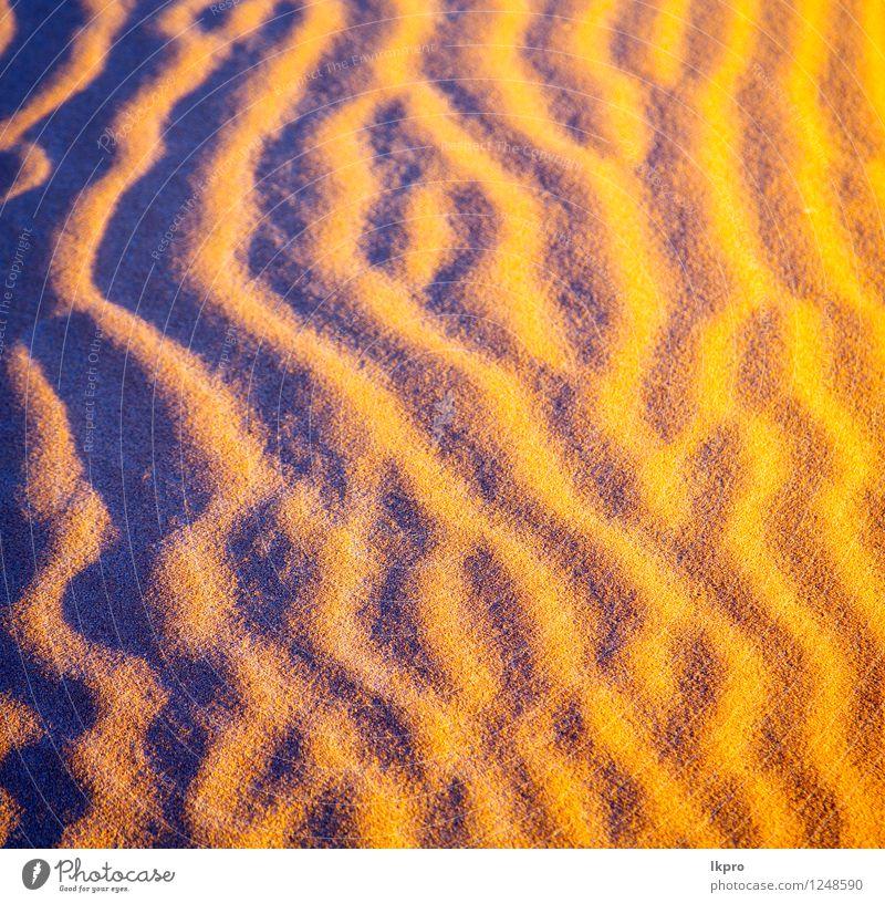 die braune Sanddüne in der Natur Ferien & Urlaub & Reisen schön Einsamkeit Landschaft gelb Idylle Schönes Wetter Hügel heiß Düne Afrika Urwald ökologisch