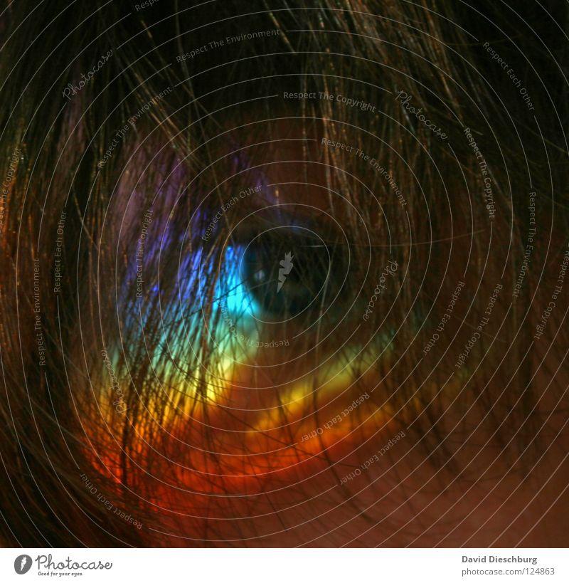 Rainbow mehrfarbig Regenbogen gelb rot Haarsträhne maskulin Pupille braun blond Streifen Körpermalerei Licht ruhig Erholung Prisma Jugendliche Kraft Farbe Cakra