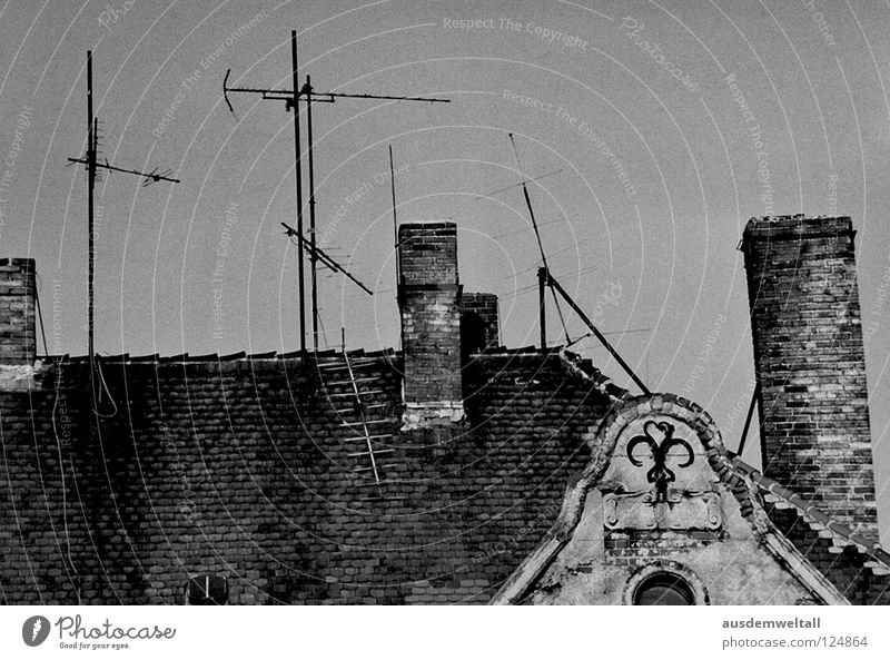 IAntennaI Dach Dachgiebel Backstein Antenne Fenster grau verfallen Friedrichshain Osten Detailaufnahme Schwarzweißfoto Schornstein Stein alt oben Himmel