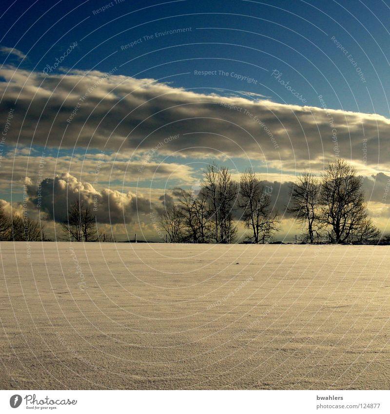 letzter Schnee? Himmel weiß Baum Sonne blau Winter Wolken Einsamkeit Ferne Horizont flach