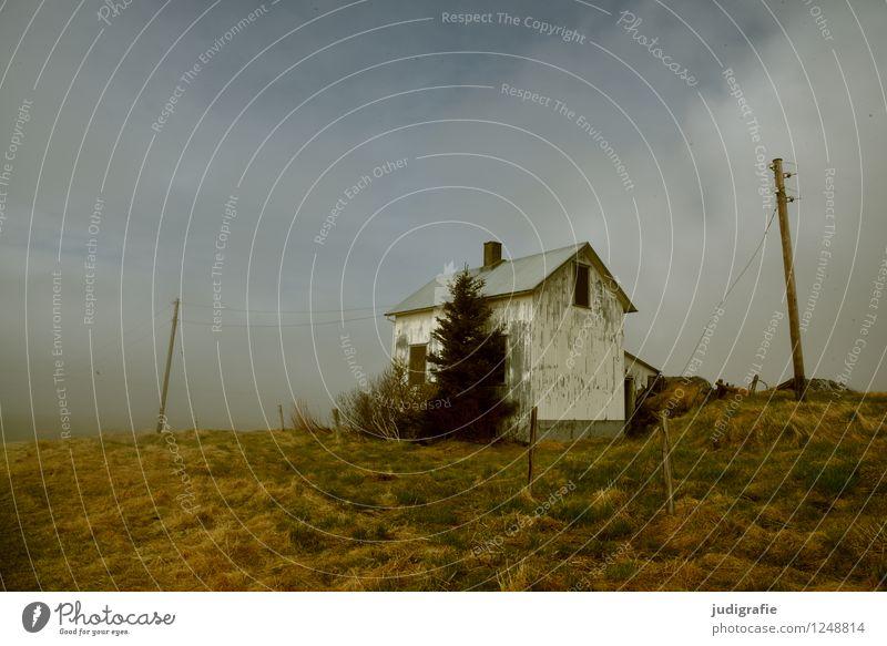 Island Umwelt Natur Landschaft Himmel Wolken Klima Wetter Menschenleer Haus Hütte Ruine Gebäude alt dunkel kalt klein natürlich niedlich wild Einsamkeit