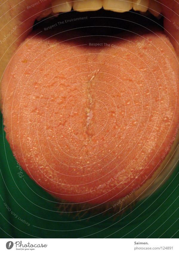digga plätz groß rot rosa Lippen weiß grün T-Shirt lecker Mann Zunge Geschmacksknospen Muskulatur Zähne