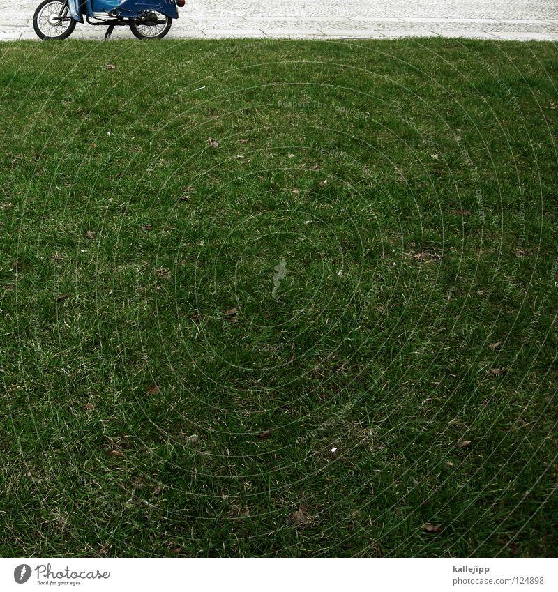 frühlingsbote Kleinmotorrad Schwalben Oldtimer fahren Wachstum Parkplatz Feinstaub Umwelt Landschaftsformen Liegewiese Vorgarten Erholungsgebiet