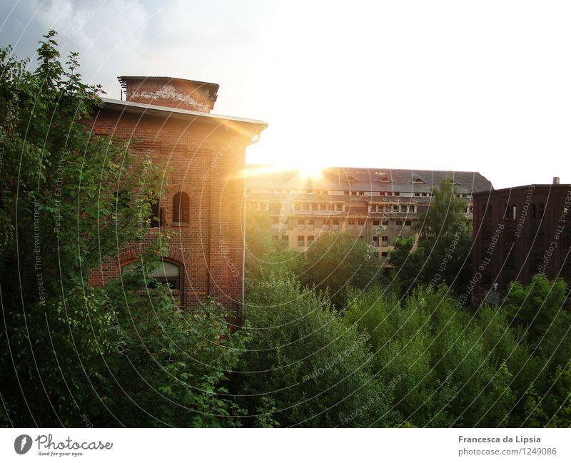 Vergessene Welt Abenteuer Sommer Leipzig Gohlis Deutschland Menschenleer Fabrik Ruine Militärgebäude Mauer Wand Fassade Fenster Dach alt leuchten ästhetisch
