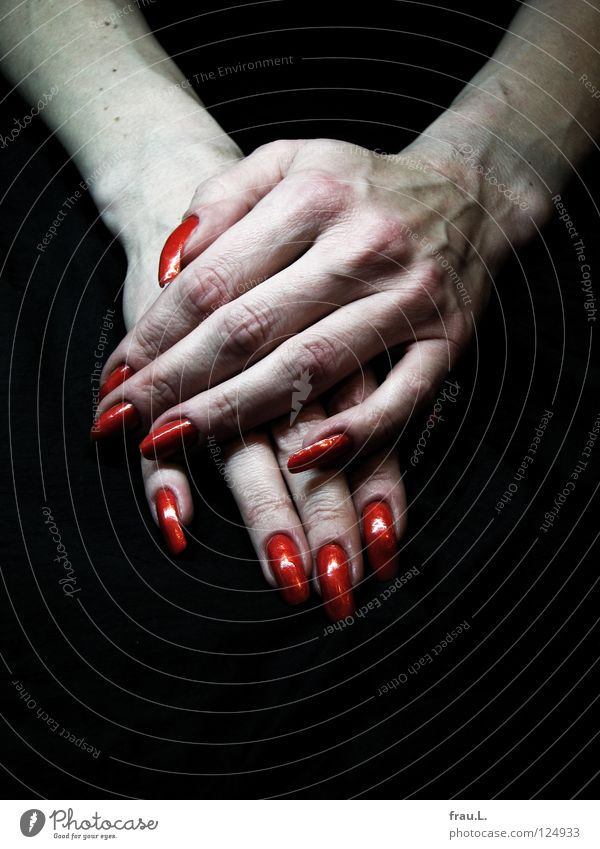 blutrot Mensch Frau Hand Erwachsene Erholung Haut authentisch lang dünn Fingernagel Nagel Gefäße extrem Krallen Nagellack