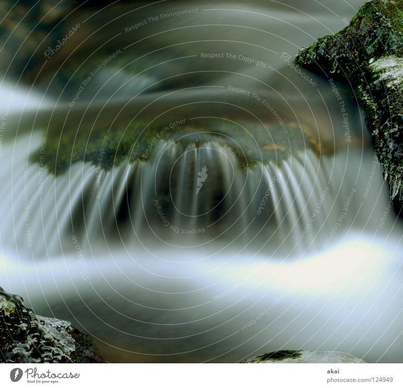 Weicher Wasserfall Berge u. Gebirge Landschaft Bach kalt weich Wildbach Schwarzwald Schauinsland Mittelgebirge graufilter Langzeitbelichtung Bewegungsunschärfe