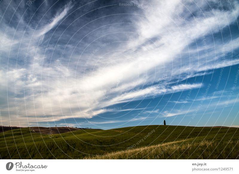 Bodenwellen Himmel Natur Ferien & Urlaub & Reisen Pflanze Sommer Landschaft Einsamkeit Wolken ruhig Ferne Umwelt Wiese Horizont Tourismus Wetter Feld