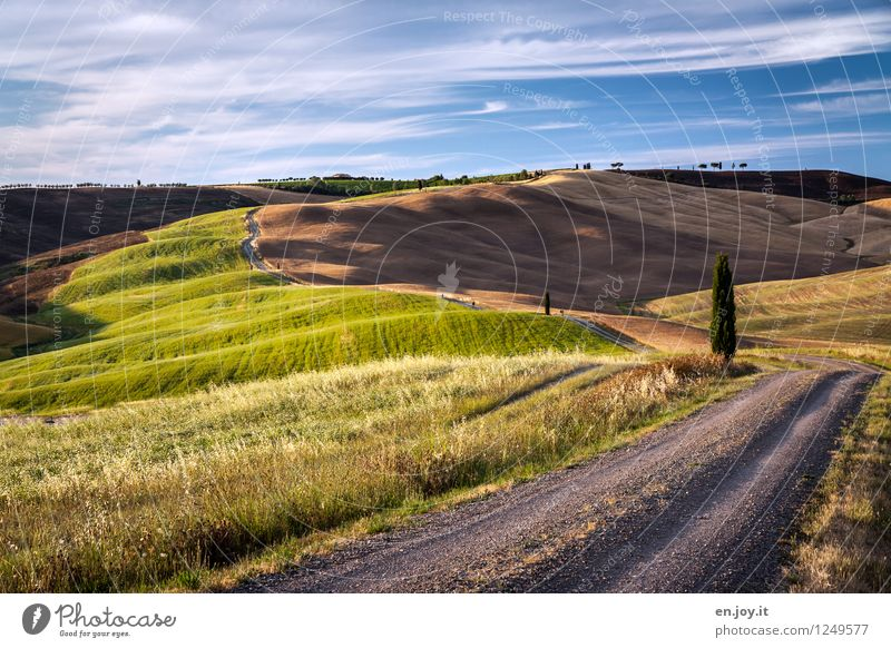 Erdfarben Himmel Natur Ferien & Urlaub & Reisen Sommer Erholung Landschaft ruhig Ferne Wege & Pfade Horizont Feld Tourismus Idylle wandern Ausflug Italien