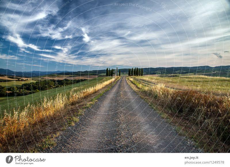 mittendurch Himmel Natur Ferien & Urlaub & Reisen Sommer Landschaft Wolken Ferne Umwelt Wege & Pfade Gras Horizont Tourismus Feld Lebensfreude Italien Schönes Wetter