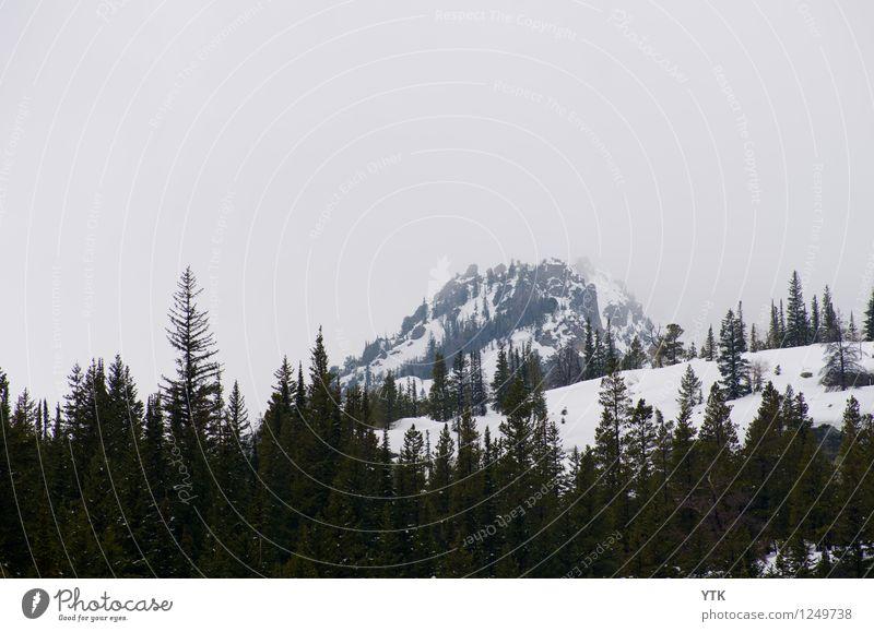 Cold Snow Peak Himmel Natur Pflanze Baum Einsamkeit Landschaft Wolken Winter Wald kalt Berge u. Gebirge Umwelt Schnee Felsen Schneefall Eis
