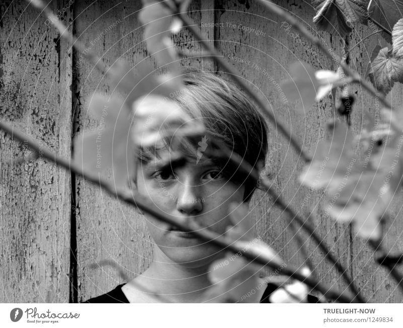 Mal sehen, was das wird... Mensch feminin Kind Mädchen Jugendliche Kopf Haare & Frisuren Gesicht Auge Nase Mund Hals 1 13-18 Jahre blond kurzhaarig Coolness