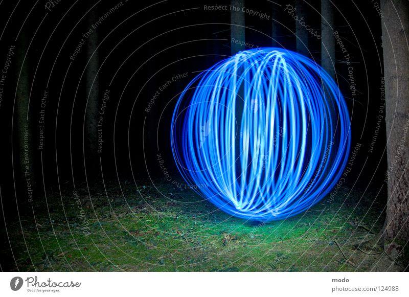Kraftfeld Licht Wald Baum dunkel Planet Taschenlampe Leuchtdiode Gras Wiese drehen kreisen Langzeitbelichtung Kugel Kreis hell blau Surrealismus
