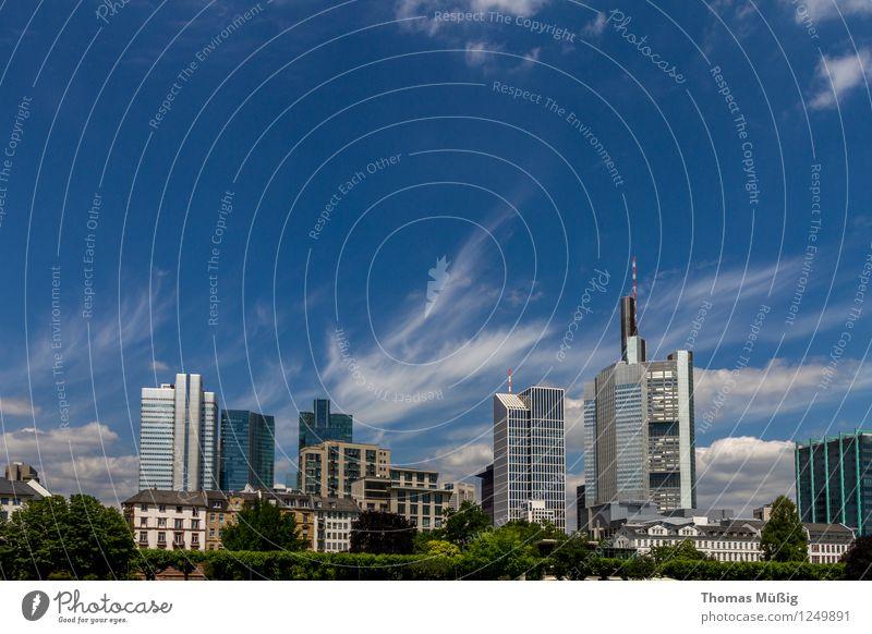 Frankfurt Tourismus Sightseeing Städtereise Himmel Wolken Sommer Stadt Stadtzentrum Skyline Hochhaus Architektur Ferien & Urlaub & Reisen