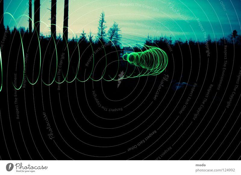 Tunnel Licht Wald Baum dunkel Taschenlampe Leuchtdiode drehen kreisen Langzeitbelichtung grün Kreis hell Surrealismus Kraftfeld Magnetfeld. Crossentwicklung