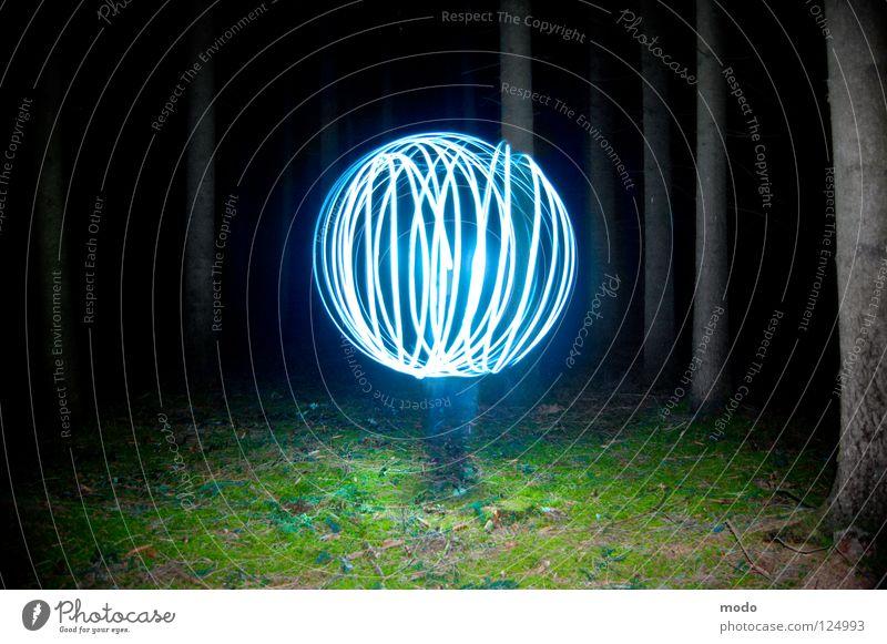 Kraftfeld No.2 Licht Wald Baum dunkel Planet Taschenlampe Leuchtdiode Gras Wiese drehen kreisen Langzeitbelichtung Laser Kugel Kreis hell blau Surrealismus