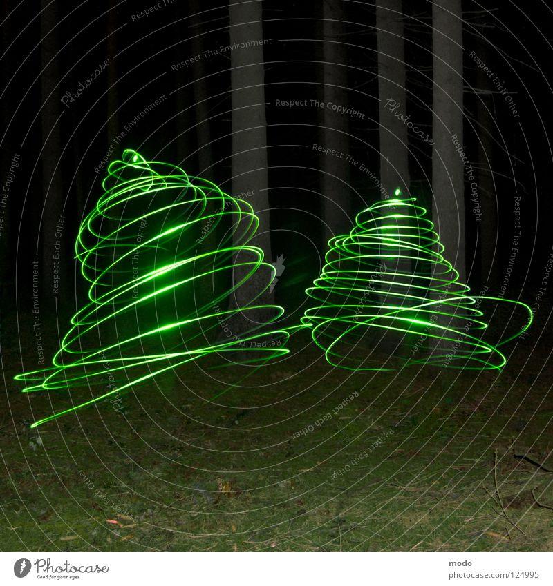 Wirbelwind Baum blau Wald dunkel Wiese Gras hell Langzeitbelichtung Kreis drehen Surrealismus Planet Laser kreisen Leuchtdiode Verwirbelung
