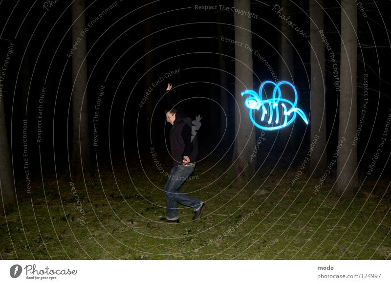 Bestäubungsängste Baum blau Wald dunkel Wiese Gras hell Angst Flügel Streifen Biene drehen Surrealismus Planet Laser Stachel