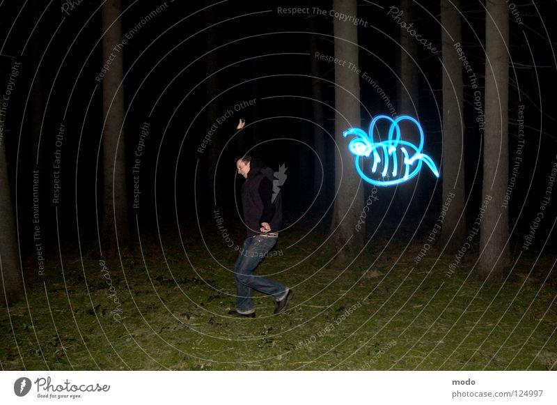 Bestäubungsängste Licht Wald Baum dunkel Planet Taschenlampe Leuchtdiode Gras Wiese drehen kreisen Langzeitbelichtung Laser Biene stechen Streifen hell blau