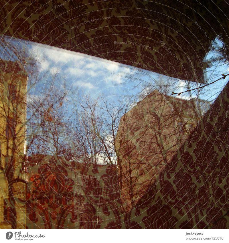 Spiegelverfahren Baum rot ruhig Wolken Haus dunkel Stil träumen Dekoration & Verzierung Glas Ast Schönes Wetter Hoffnung Sehnsucht Irritation exotisch