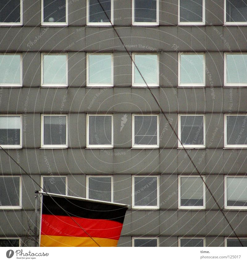Fahne vor Platte Haus Wand Fenster Fensterfront grau Reflexion & Spiegelung Draht Rechteck Stoff Wahrzeichen Dekoration & Verzierung Leitung Tuch Deutschland
