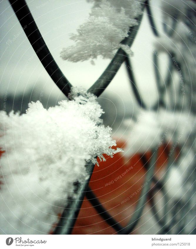 Winterpause Winter kalt Schnee Bewegung Eis liegen Frost Pause Zaun Draht Tennis schließen Frustration Schnellzug Ausgrenzung Ballsport
