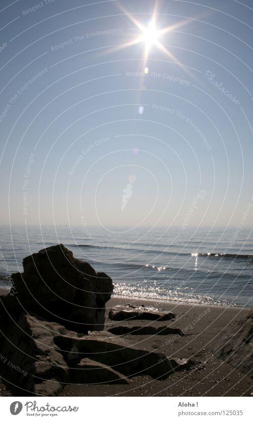 Enjoy the sun like the stone on the beach! Himmel Natur Wasser weiß blau schön Sonne Sommer Strand Meer Wolken schwarz Tier Freiheit Gefühle grau