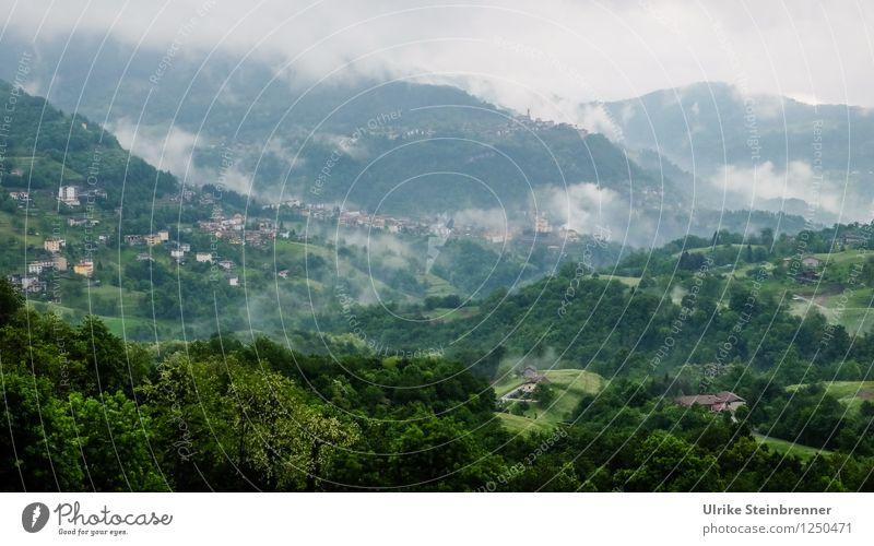 Villeggiatura 3 Natur Ferien & Urlaub & Reisen Pflanze grün Baum Landschaft Wolken Wald Berge u. Gebirge Umwelt Frühling Tourismus Wachstum Nebel Europa Italien
