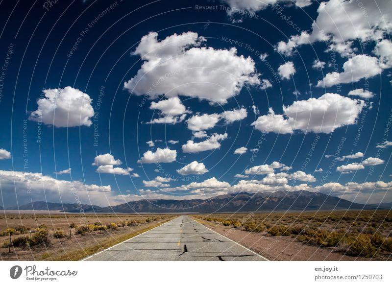 die Nächstmögliche links... Himmel Natur Ferien & Urlaub & Reisen Sommer Einsamkeit Landschaft Wolken Ferne Berge u. Gebirge Straße Wege & Pfade Freiheit