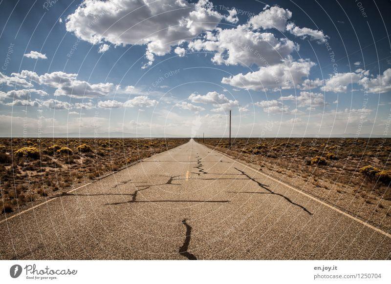 straight Himmel Natur Ferien & Urlaub & Reisen Sommer Landschaft Wolken Ferne Straße Wege & Pfade Freiheit Horizont Sträucher Abenteuer Unendlichkeit trocken USA