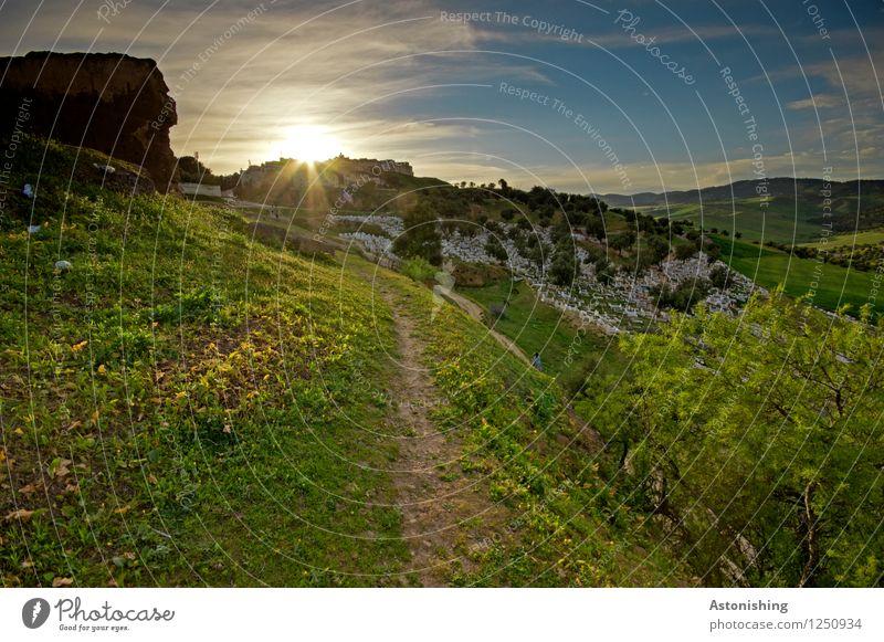 Sonnenuntergang in Marokko Umwelt Natur Landschaft Pflanze Luft Himmel Wolken Horizont Sonnenaufgang Sonnenlicht Sommer Wetter Schönes Wetter Wärme Baum Blume