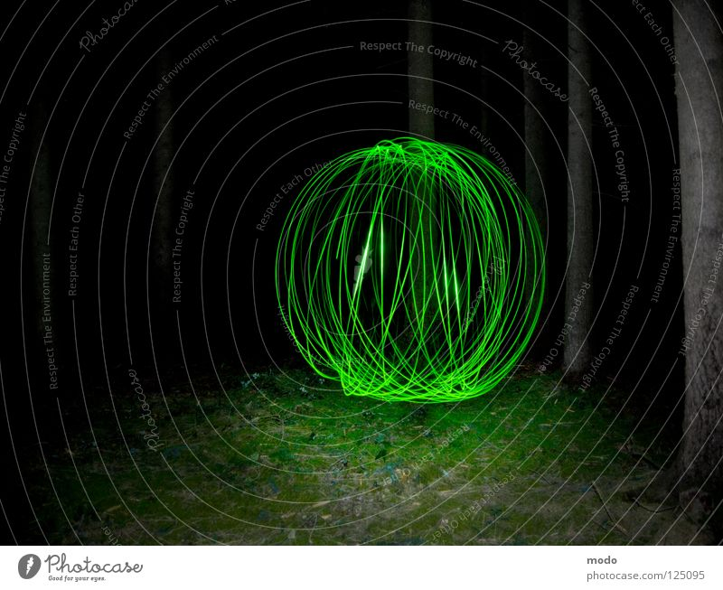 Kraftfeld No.3 Licht Wald Baum dunkel grün Planet Taschenlampe Leuchtdiode Gras Wiese drehen kreisen Langzeitbelichtung Laser Kugel Kreis hell Surrealismus