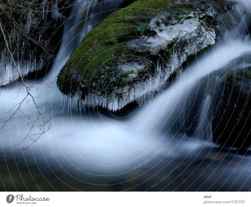 Weichspüler Berge u. Gebirge Landschaft Wasser Bach Fluss Wasserfall kalt weich Wildbach Schwarzwald Schauinsland Mittelgebirge graufilter Langzeitbelichtung