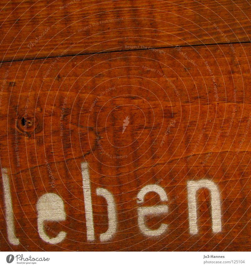 Ich lebe live Leben Wunsch Holz Wand Astloch braun ökologisch Typographie Buchstaben Beginn atmen Schriftzeichen Vergänglichkeit alive living Kasten Maserung