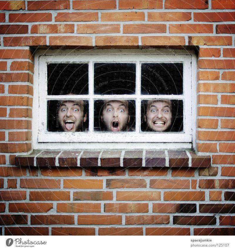 Affentheater Mann Freude Fenster Wand Mauer Stein Glas geschlossen verrückt Backstein skurril Fensterscheibe Freak gefangen Humor