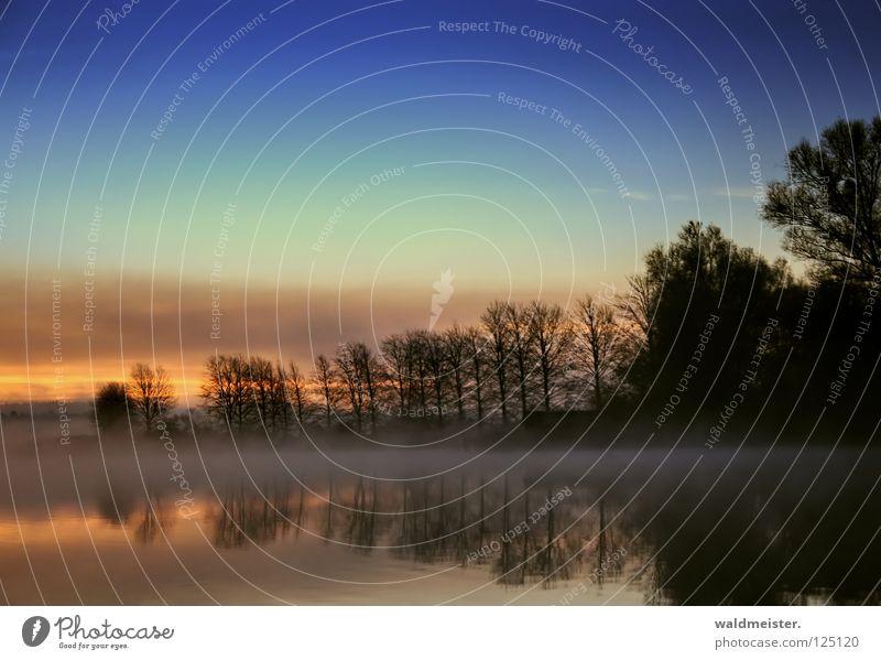Morgen Wasser Himmel Baum ruhig Wolken kalt Herbst Traurigkeit See Nebel Romantik Morgennebel