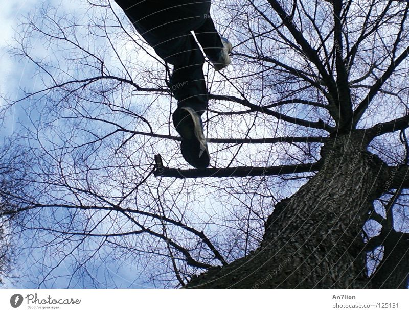 step two Himmel Baum Spielen Schuhe fliegen Nike