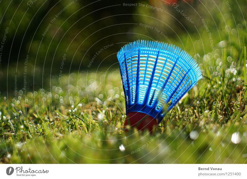 federball Freizeit & Hobby Sommer Sonne Garten Sport Ballsport Gras Wiese Kunststoff Bewegung liegen hell blau grün rot Badminton Federball Tennisschläger Rasen