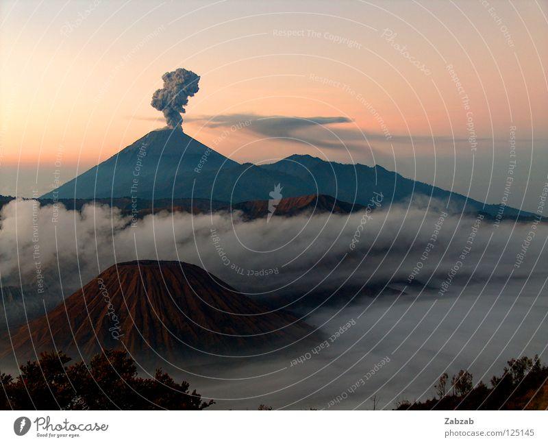 Bromo ruhig Gelassenheit Ausbruch Asien Indonesien Java Eruption rosa rot braun grau schwarz Stimmung Außenaufnahme Nebel Wolken Baum Sträucher Dämmerung