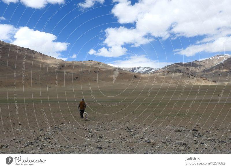 ...der einsame Schäfer... Mensch Himmel Einsamkeit ruhig Tier Ferne Berge u. Gebirge Bewegung gehen Felsen maskulin Urelemente Zusammenhalt Team Tradition