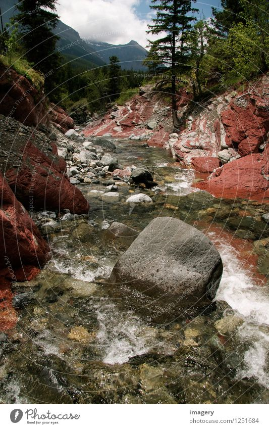 """Red Rock Canyon Natur Landschaft Wasser Sommer Felsen Berge u. Gebirge Schlucht Fluss """"Kanada Waterton Lakes Nationalpark"""" Nordamerika Stein genießen ästhetisch"""