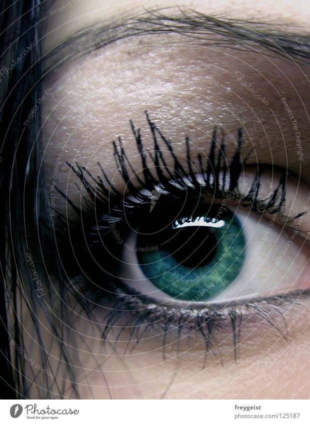 Dark Green grün schwarz Gesicht Auge dunkel Haare & Frisuren geheimnisvoll Schminke Kosmetik mystisch Wimpern Augenbraue Pupille Wimperntusche Regenbogenhaut Kajal